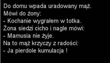http://www.zgierz.pun.pl/_fora/zgierz/gallery/100_1385108595.jpg