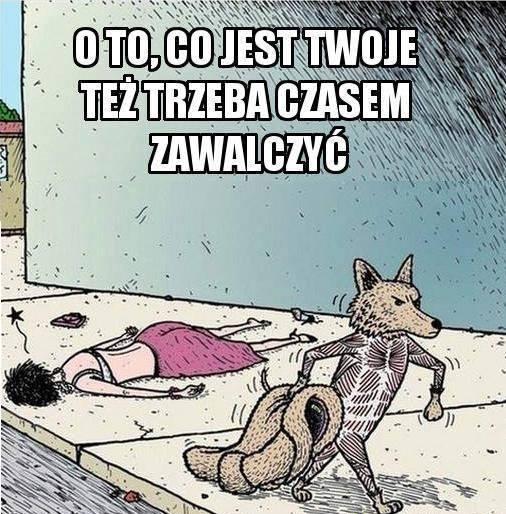 http://www.zgierz.pun.pl/_fora/zgierz/gallery/100_1391162596.jpg