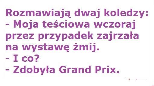 http://www.zgierz.pun.pl/_fora/zgierz/gallery/100_1391163412.jpg