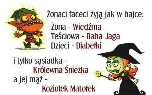 http://www.zgierz.pun.pl/_fora/zgierz/gallery/100_1397224185.jpg