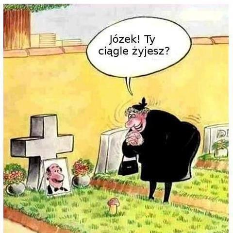 http://www.zgierz.pun.pl/_fora/zgierz/gallery/101_1388755774.jpg