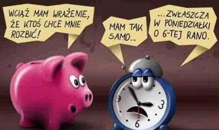 http://www.zgierz.pun.pl/_fora/zgierz/gallery/115_1397118258.jpg