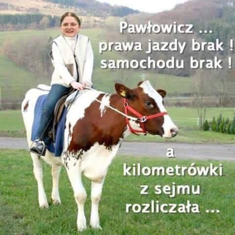 http://www.zgierz.pun.pl/_fora/zgierz/gallery/221_1451650939.jpg