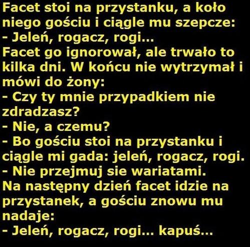 http://www.zgierz.pun.pl/_fora/zgierz/gallery/26_1383641783.jpg