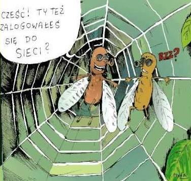 http://www.zgierz.pun.pl/_fora/zgierz/gallery/26_1383658916.jpg
