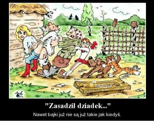 http://www.zgierz.pun.pl/_fora/zgierz/gallery/280_1478958326.jpg