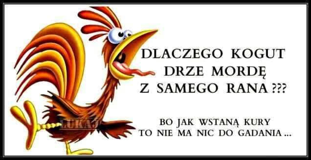 http://www.zgierz.pun.pl/_fora/zgierz/gallery/304_1451108234.jpg