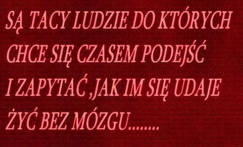 http://www.zgierz.pun.pl/_fora/zgierz/gallery/304_1452988193.jpg