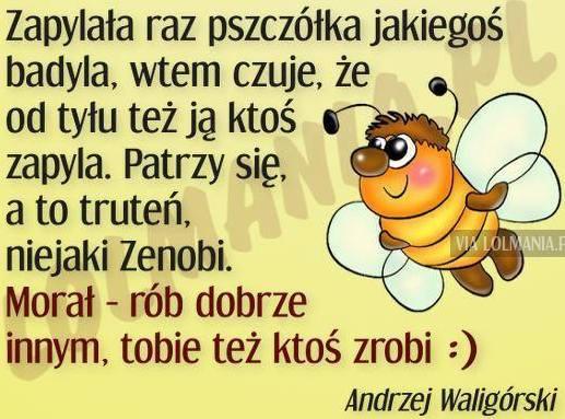 http://www.zgierz.pun.pl/_fora/zgierz/gallery/304_1452988930.jpg