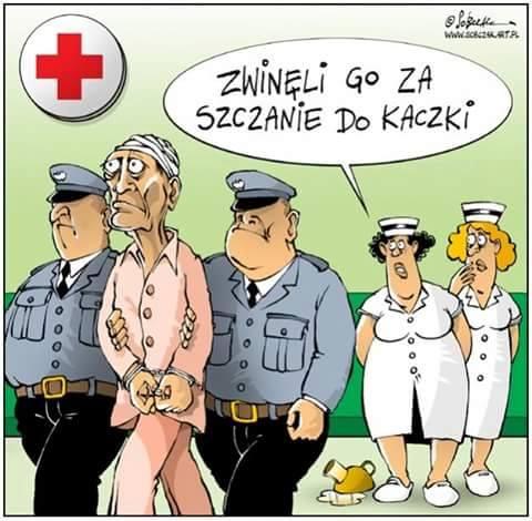 http://www.zgierz.pun.pl/_fora/zgierz/gallery/310_1454823529.jpg