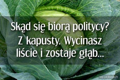 http://www.zgierz.pun.pl/_fora/zgierz/gallery/349_1464420248.jpg