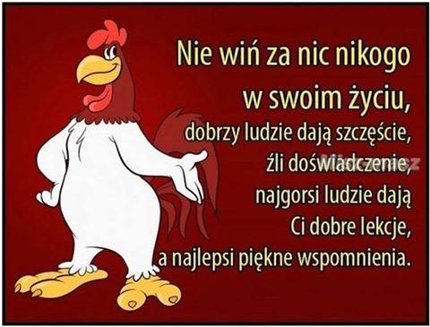 http://www.zgierz.pun.pl/_fora/zgierz/gallery/364_1467174024.jpg
