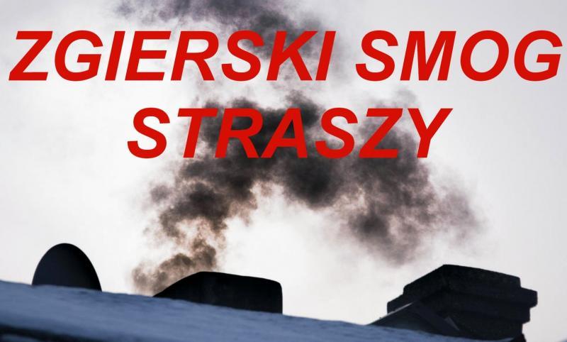 http://www.zgierz.pun.pl/_fora/zgierz/gallery/372_1490214795.jpg