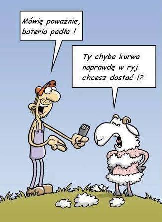 http://www.zgierz.pun.pl/_fora/zgierz/gallery/53_1385976827.jpg