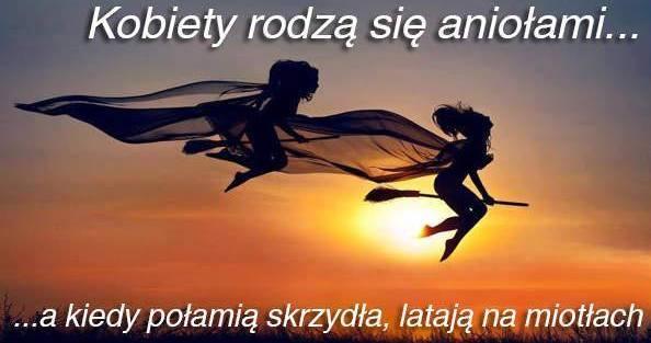 http://www.zgierz.pun.pl/_fora/zgierz/gallery/56_1418037737.jpg