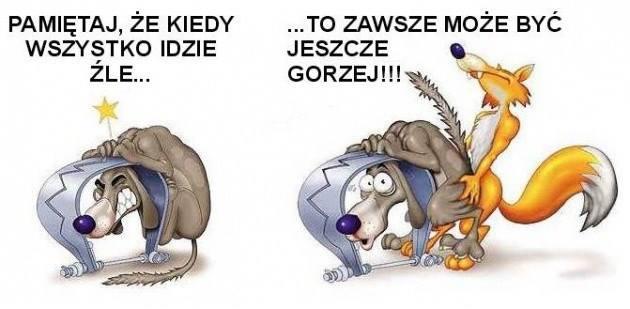 http://www.zgierz.pun.pl/_fora/zgierz/gallery/77_1381998643.jpg