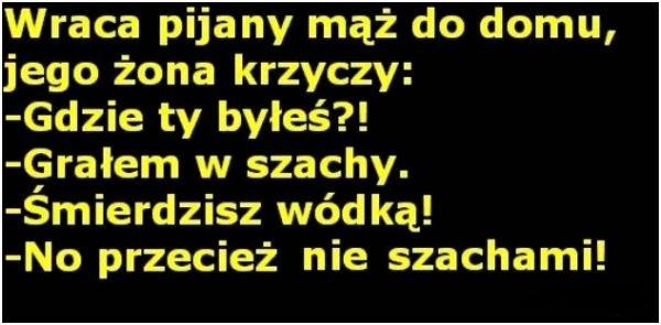 http://www.zgierz.pun.pl/_fora/zgierz/gallery/77_1383121329.jpg